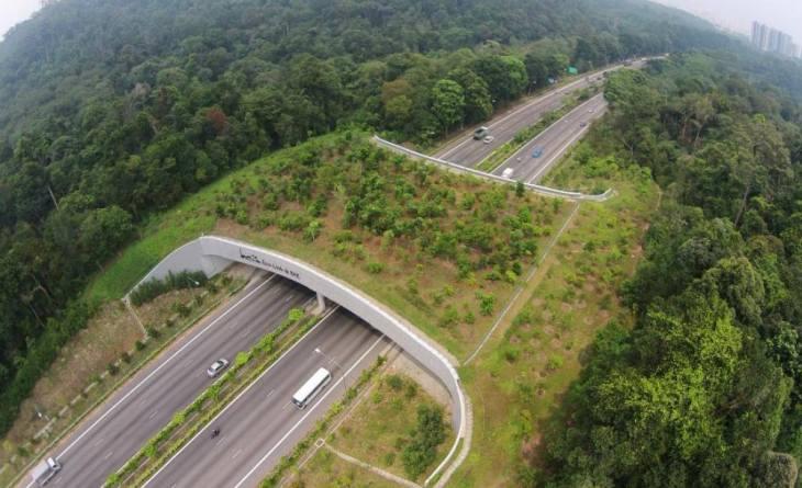 Hillion Residences - ECO Link at Bukit Timah.jpg