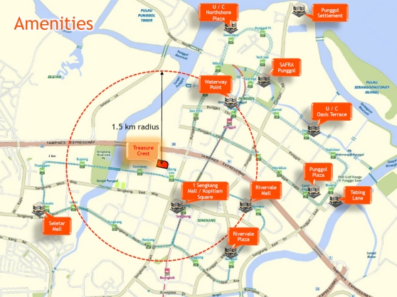 Amenities are plenty all within 1.5 km from Treasure Crest EC