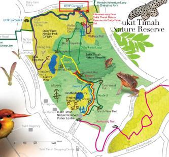 Bukit-Timah-Nature-Reserve.jpg