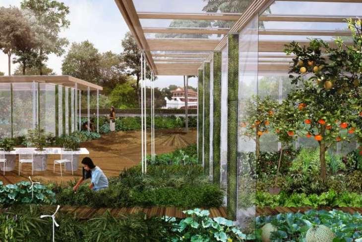 5_edible_show_garden